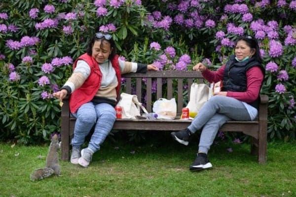 Social distancing picnic during lockdown
