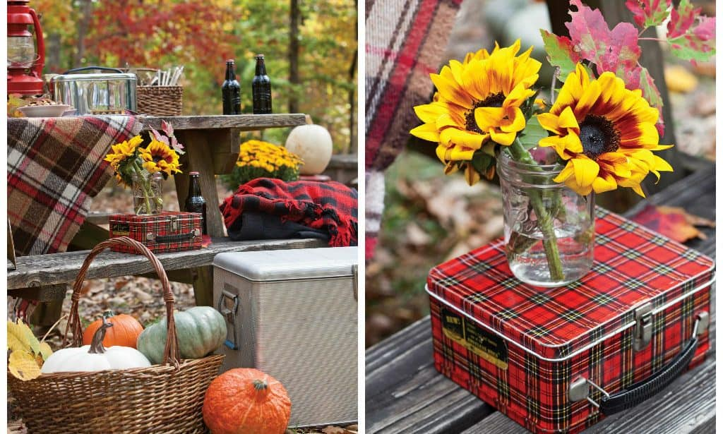 Best Products for an autumn picnic