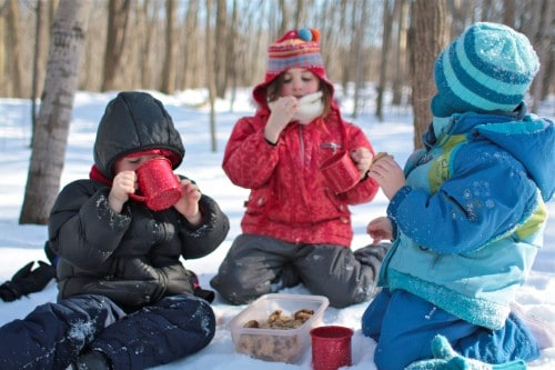 2021 winter picnic